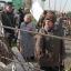 В Гродно в субботу пройдет «Бярозавы фэст»