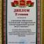 Диплом II степени в областном конкурсе на лучшую организацию работы учреждений профессионального образования